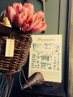 #mercadoloftstore #umseisum #porto #poster #tools #bike #flowers #summer #interior #produtoportuguês #ilustração