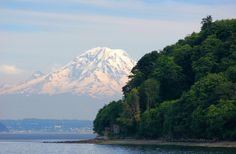 View from the bay of Mt Rainer.