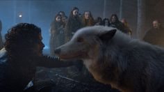 """I missed you, boy.""  Jon Snow and Ghost ~ Game of Thrones"