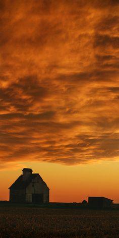 Oggi vi abbiamo portato in Illinois, e proprio da lì vi salutiamo con questo splendido tramonto #goldenhour