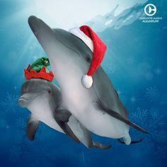 Winter & Hope's Merry Christmas!