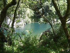 Piscine naturelle...Bassin de La Rivière des Marsouins