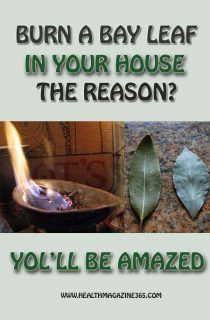 Burn A Bay Leaf In Your House. The Reason? You'll Be Amazed! Has a soothing effect the article states.
