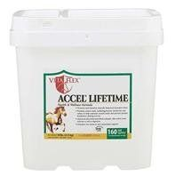 ACCEL LIFETIME, Size: 10 POUND, Restricted States: SD (Catalog Category: Equine Supplements:SUPPLEMENTS) by FARNAM CO - VITAFLEX. $106.77. Accel lifetime provides your horse with two times the amount of vitamin e and selenium of regular accel, and eight times the. Glutasyn is the master antioxidant. This helps improve an animal s immune system response. Enclosed scoop holds 1 ounce. During training, performance, breeding, gestation, lactation, or stress: 2 ounces (2 scoops) ...