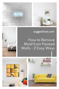 Mold on the painted wall threatens the health of your family living in the home and ruins the appearance of the wall. To restore the beauty of the wall and create a healthy home, knowing how to remove mold from painted walls is essential. Removing the mold can be an easy task if you follow some steps correctly. #DIY #cleaning #homehacks#diytips Deep Cleaning Tips, Cleaning Walls, Bathroom Cleaning, Remove Mold, Concrete Block Walls, Painted Walls, Home Hacks, Home Organization, Restore