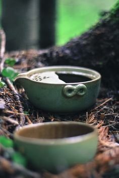 #Chineasetea, #cups, #nature, #forest, #hiking, #adventure, #Russia, #Ural, #Taganay