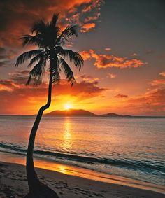 Caribbean Sunset, Tortola, BVI Mural - John Scanlan  Murals Your Way