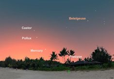 Multiple meteor showers and planets on parade await stargazers looking up this month. Closer To The Moon, Meteor Shower August, Dark Site, Perseid Meteor Shower, August Calendar, Castor And Pollux, Waxing Gibbous, All Planets, Star Cluster