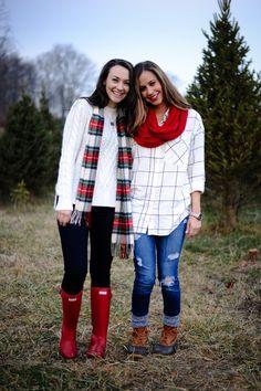 College Prep: Christmas Tree Farm