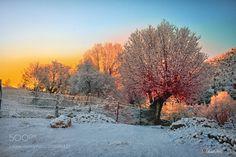 winter & autumn by ismail_bilir via http://ift.tt/2muiVCT