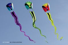 Dragon kites.