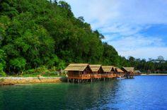 http://gerardsaliot.tumblr.com/post/25084622306/redefining-the-fijian-tourist-base-gerard-saliot