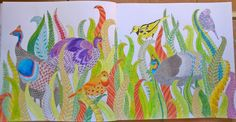 Birds, Wild Savannah, Millie Marotta, colouring: me