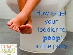 Cloth Diaper Revival: How to get your toddler to poop in the potty!