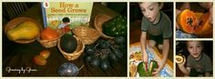 Must try this Plant & Seed unit by Growing by Grace. Lots of fun ideas for gr.1-3 but could be adapted for kindergarden too.