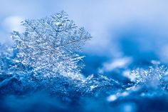 snowflake by Pete1987 on DeviantArt