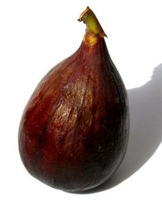 Since Adam and Eve discovered its hidden value, the fig has been used in culinary dishes and pastries throughout the ages. In fact, did you know that the fig is the sweetest of all the fruits with a 5