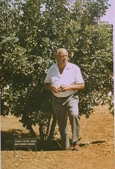 Oskar Schindler in 1970 posing next to the tree that he planted eight years ago in Jerusalem, Israel/Palestine. http://digitalassets.ushmm.org/photoarchives/detail.aspx?id=31615=Schindler=36