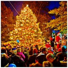 Christmas in Chestnut Hill, PA