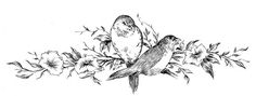 Vintage Sketches - Birds on Floral Branch - The Graphics Fairy