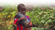 CLICK for FREE to help Environment, Children and Animals: Take a photo, make a difference with Donate a Phot...