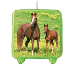 Wild Horses Molded Candle Party Accessory * Click on the image for additional details.