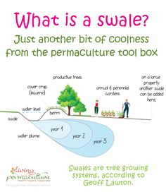 Learn about this important aspect of permaculture water harvesting.