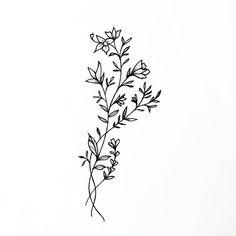 "477 Likes, 4 Comments - Tattoo artist (@dabytz) on Instagram: ""Dibujando plantitas . #dabytz #comingtatts #botanicalart #travelingartist #Wellington #NewZealand"""