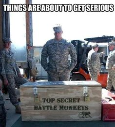 Funny pictures about The military is not messing around anymore. Oh, and cool pics about The military is not messing around anymore. Also, The military is not messing around anymore. Memes Humor, Funny Quotes, Funny Memes, Asshole Quotes, Funny Captions, Military Humor, Army Humor, Military Life, Looks Cool