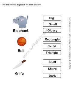 Describing Words Worksheet 12