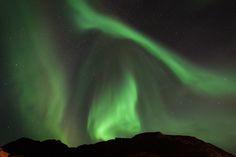 Aurora Borealis... Lofoten, Ballstad, Nordland, Norway.