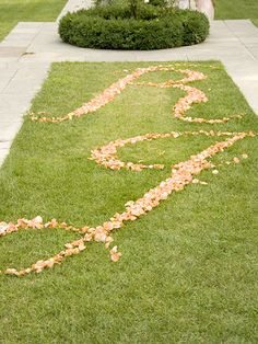 Initials in Rose Petals