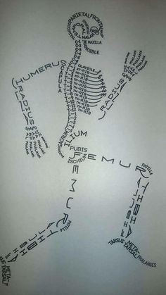 Helpful graphic when dealing with orthopedic issues.