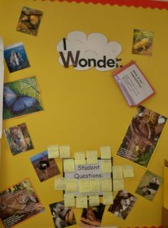 Reminder: get students to ask 'I wonder' questions to guide our learning in all subject areas