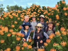 The Fynbos Trail | Guided Hiking Trails in Hermanus | Slackpacking - Dirty Boots Whale Watching Destinations, Whale Watching Season, Shark Cage, Trail Guide, Adventure Activities, Walking Tour, Hiking Trails, South Africa, Fun Things
