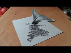 How to Draw Blue Whale? Anamorphic illusion a Whale. Whale Drawing, 3d Art Drawing, Drawing Skills, Drawing Ideas, Paper Drawing, Drawing Animals, Amazing Drawings, Realistic Drawings, Cool Drawings