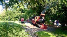Der Countdown läuft: Ab 1. April tuckert die Schlossgartenbahn wieder durch den Schlossgarten. Eine Fahrt mit der Bahn ist total entspannend und idyllisch und sollte auf jedem Fall bei Eurem nächsten Karlsruhe Besuch auf eurem Plan stehen ;)