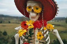cool skeleton