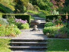 Garden Sherwood Newton St Cyres  Devon Engeland