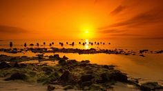1920x1080 HD Widescreen sunset