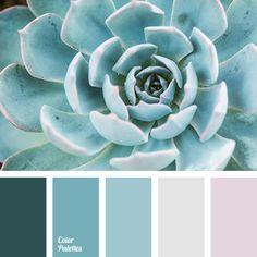 Color Palette #2610