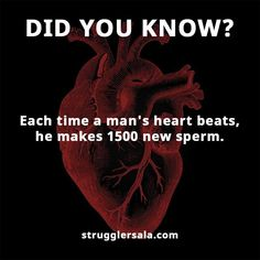 Struggle Facts, Quotes, Wallpapers and Stories Interesting Science Facts, Amazing Science Facts, Interesting Facts About World, Amazing Facts, Wow Facts, Real Facts, General Knowledge Facts, Knowledge Quotes, Biology Facts