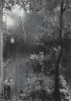 Summer from the Window of My Atelier by Josef Sudek, 1940.