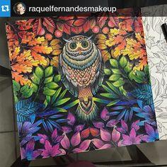 Jardim Colorido  @jardimcolorido Instagram photos | Websta