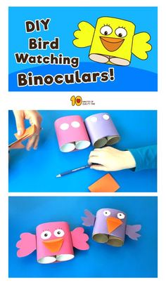 Bird Watching Binoculars Craft