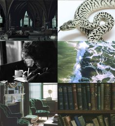 The Slytherin Commons