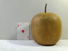 Apple Gourd Quality Hard-shell Dried Apple Gourd washed dried and ready For Crafts BIRDHOUSE...... AG#10 by midmowoodworks on Etsy