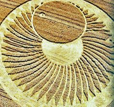Crop Circle at Ravenna Waterski Club, nr Cervia, Italy. Reported 20th June …