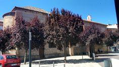 San Andrés  #marcatalavera, #Talavera