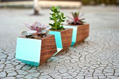 This adorable trio of painted wooden box car planters ($62) reminds us of surfboards and Summer.